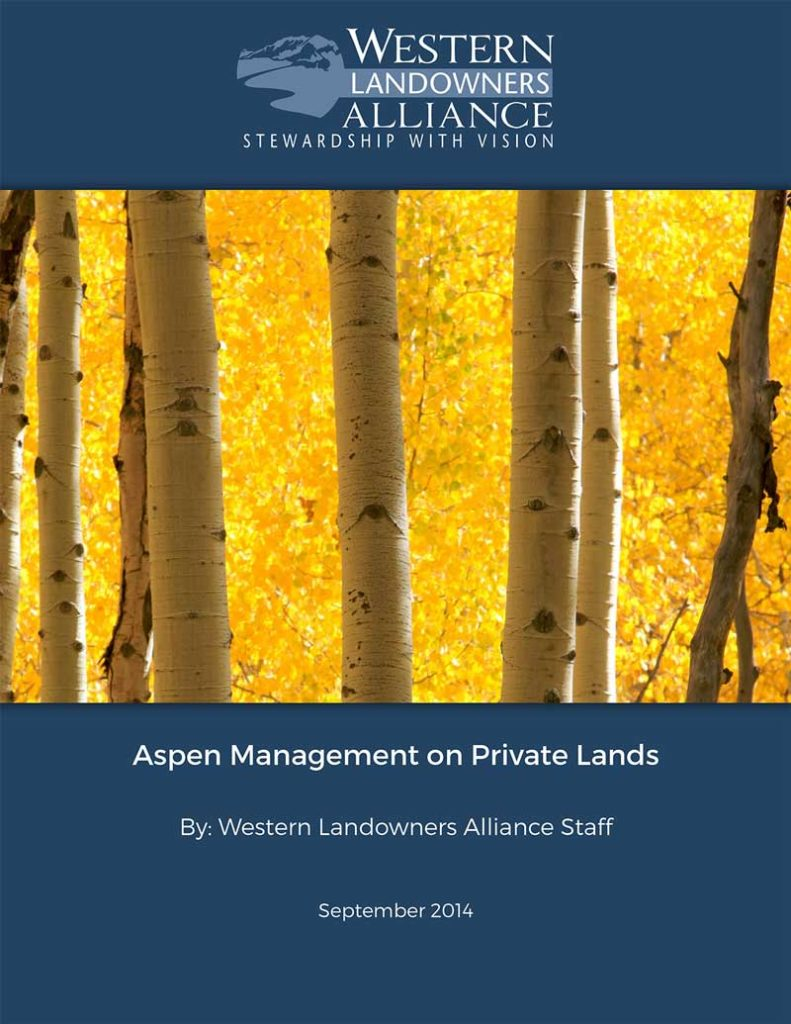 Aspen-Management-Guide-Cover