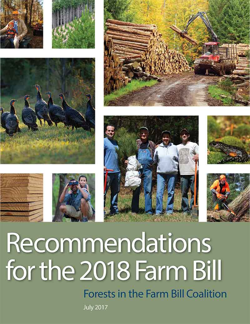 Forests-in-the-Farm-Bill-2018-Cover-Thumbnail