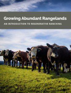 Growing-Abundant-Rangelands
