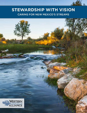 WLA Stream Stewardship NM Streams