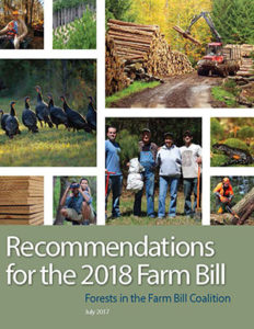 Forests in the Farm Bill 2018 Recommendations