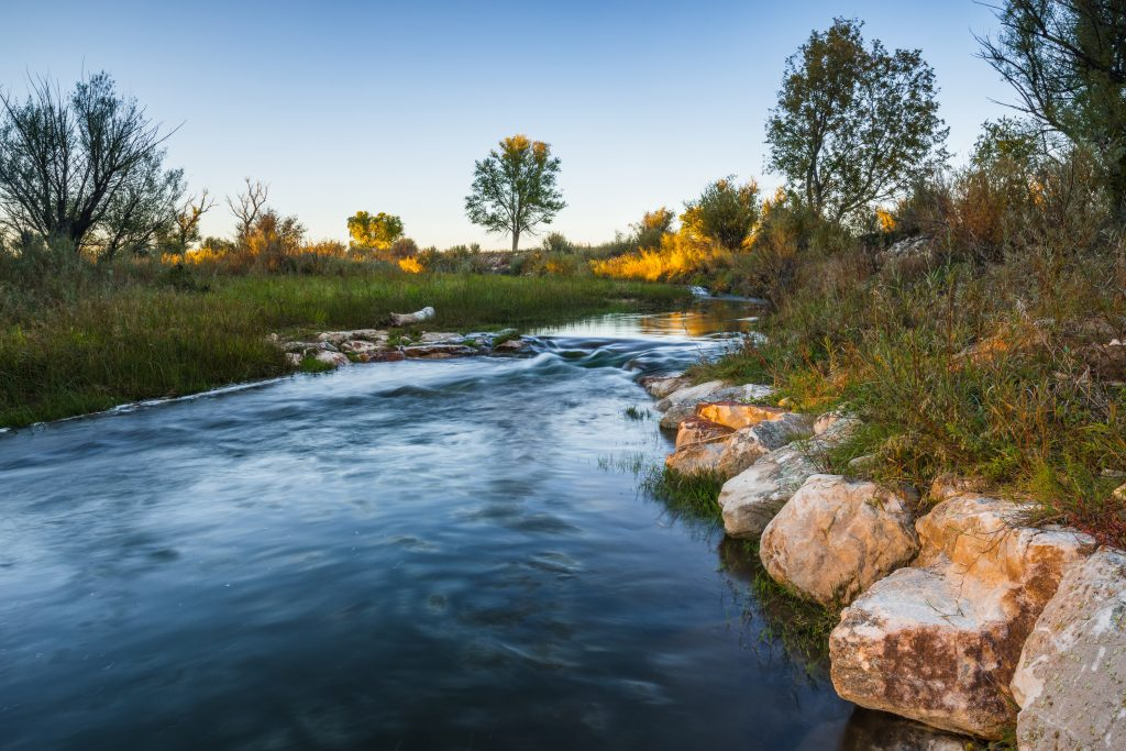 A stream on Piojo Ranch in New Mexico