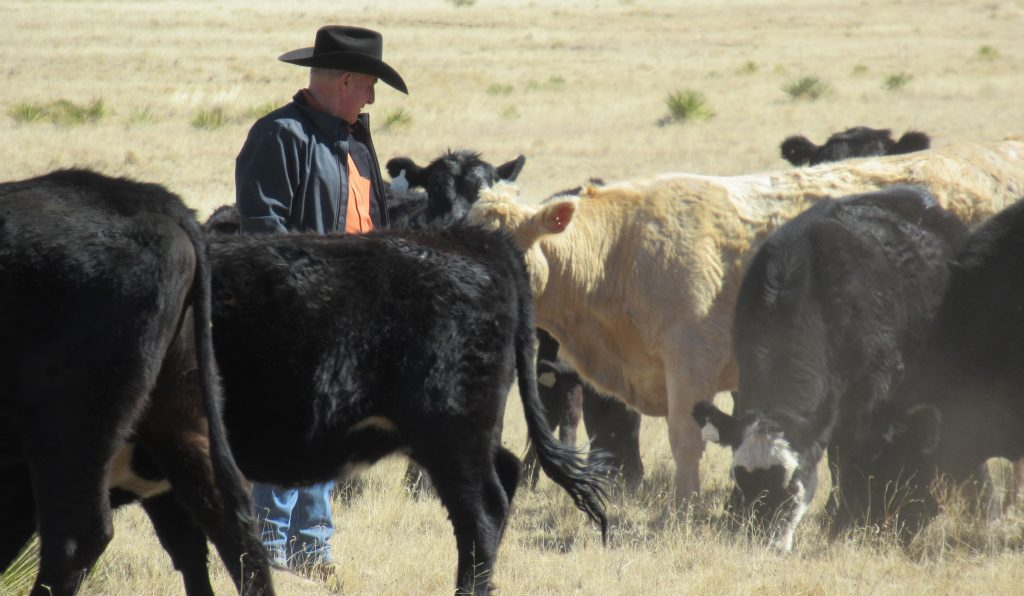 Western Digest - April 2018 - Western Landowners Alliance