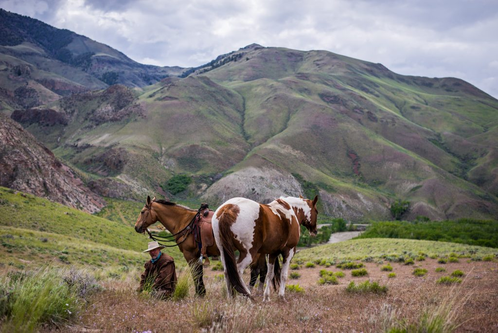 Western Digest – May 2019 - Western Landowners Alliance