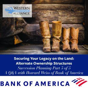 BofA Succession Planning Featured Image-100