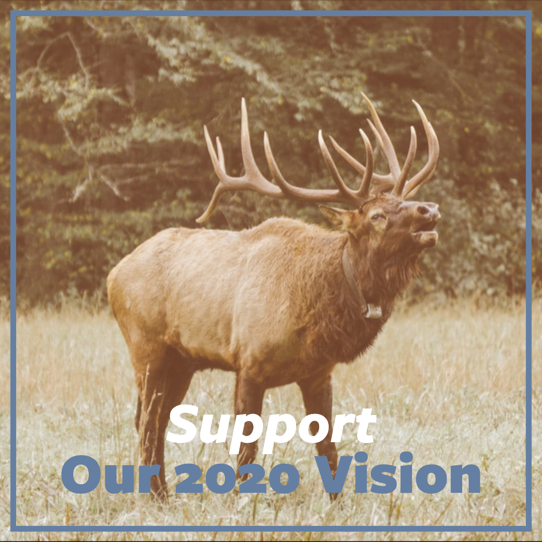 Support2020Vision