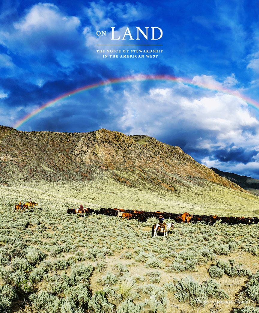 On Land Vol 1 Summer 2020 - Cover Image