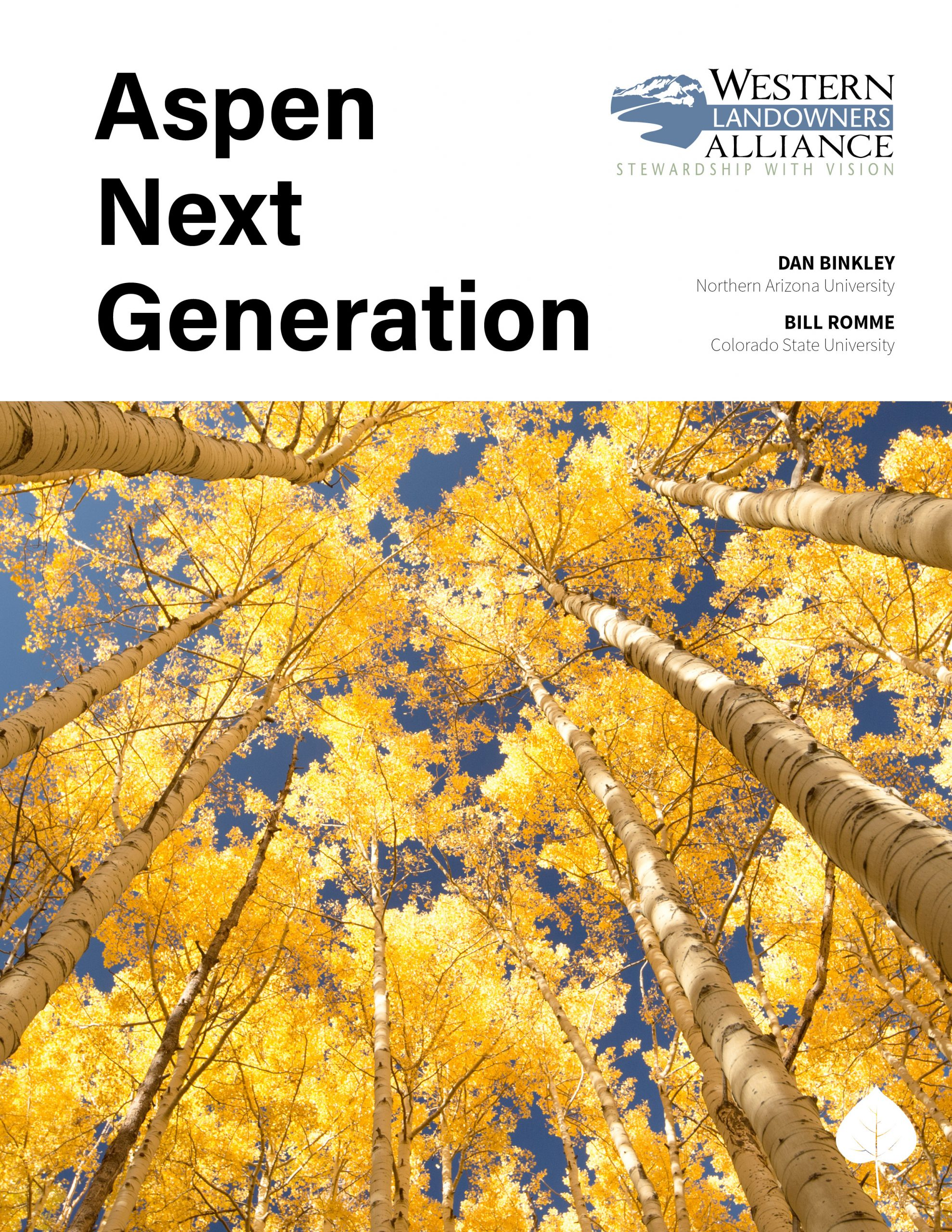 Cover Aspen Next Generation Report