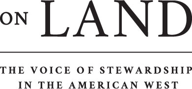 OnLand_Logo_PTag_Black