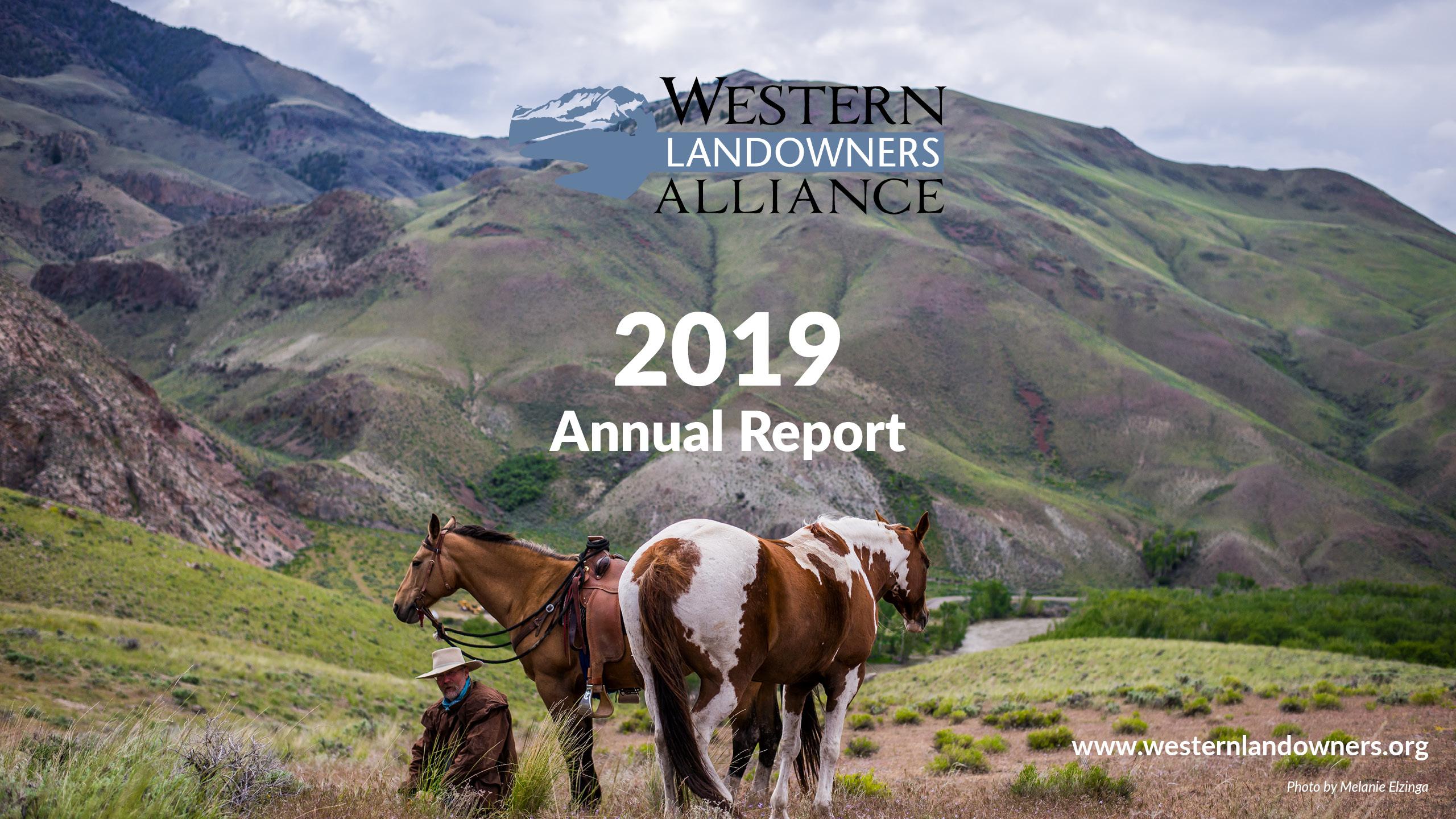 WLA Annual Report 2019 Cover