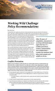 2020 Working Wild Challenge Policy Recommendations COVER