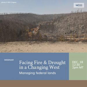 Fire and Drought webinar banner (7)
