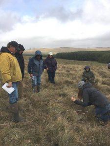 https://www.albertapcf.org/about-prairies/range-stewardship