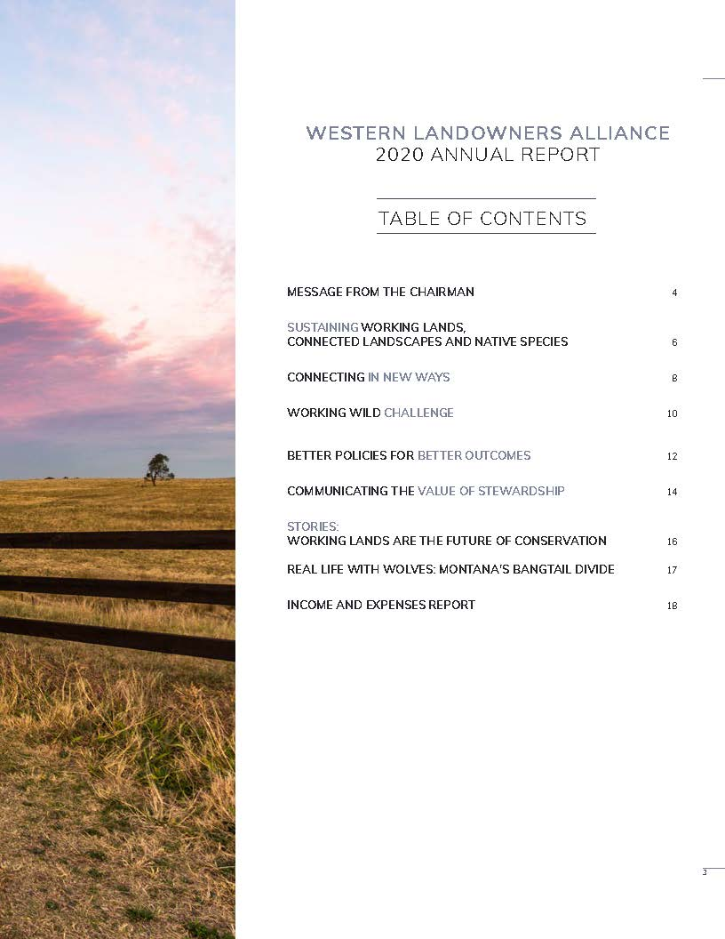 Cover and TOC from 2020_Annual Report_vF_web_Page_3