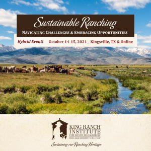 king ranch institute