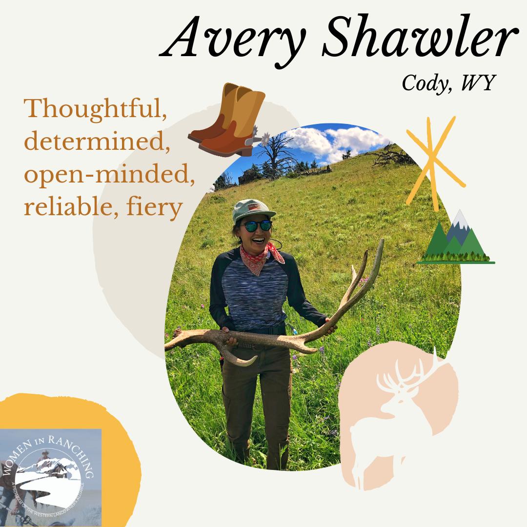 Avery Shawler